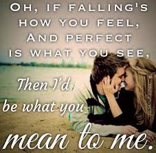 wedding quotes country 783 best song quotes images on song quotes country