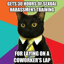 Sexual Harrassment Meme - gets 30 hours of sexual harassment cat meme cat planet cat planet
