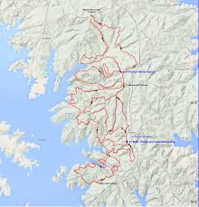 Google Map Of Florida Lake Martin 100 Southeastern Trail Runs