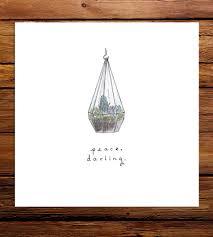 peace darling succulent terrarium art print art prints u0026 posters
