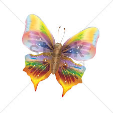 colorful butterfly vector image 1526847 stockunlimited