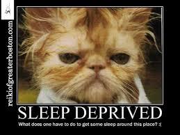 Lack Of Sleep Meme - good morning how d you sleep last night newton ma patch