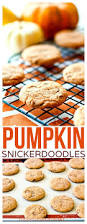 Libby Pumpkin Pie Convection Oven by 3537 Best Time To Bake Some Images On Pinterest Dessert