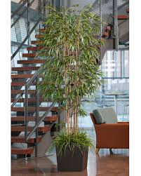 6 deluxe artificial silk bamboo tree at petals
