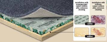 Carpet Pad For Basement by Floor Padding When Do You Need It The Floors To Your Home Blog