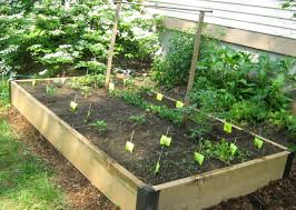 easy and simple diy square foot wood raised bed vegetable gardens