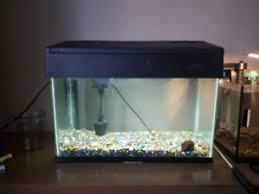 membuat filter aquarium kecil aquarium buy or sell fish in north bay kijiji classifieds