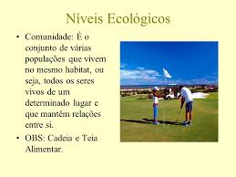 si e habitat ecologia níveis de organização conceitos ecológicos ppt carregar