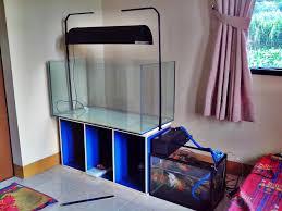 membuat aquascape bening setup aquascape jurnal aquascape