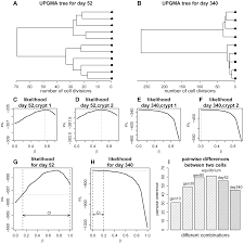 age dependent transition from cell level to population level