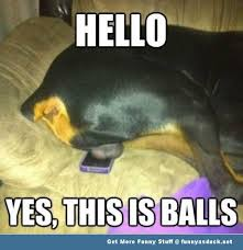Funny Hello Meme - hello yes this is balls funny meme