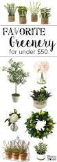 Budget Home Decor Websites Favorite Greenery For Under 50 Bless U0027er House