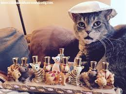 cat menorah cat chat with caren and secret paws my favorite
