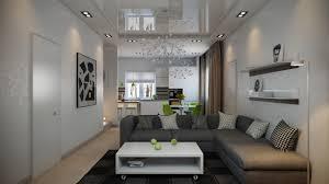 dark gray sofa interior design ideas