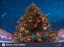 a huge christmas tree at somerset house in london stock photo