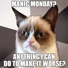 Grumpy Cat Monday Meme - musically malicious grumpy cat imgflip