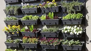 vertical gardens how to build a vertical garden bunnings warehouse