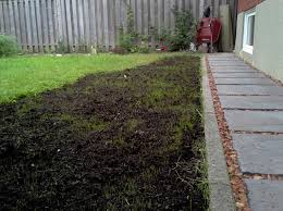 lawn top dressing how much and how long does the grass need to