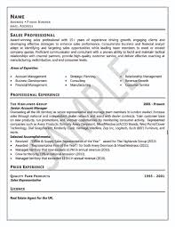 Profile Examples For Resumes How To Write A Professional Resume Free Resume Example And Custom