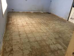 epoxy vinyl chip flooring in kennel kote decorative