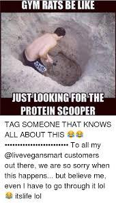 Gym Rats Meme - 25 best memes about gym rats be like gym rats be like memes