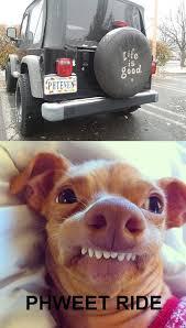 Tuna The Dog Meme - image 656348 phteven tuna the dog know your meme