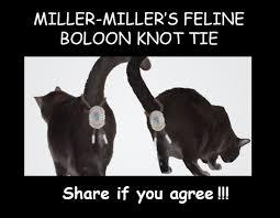 Freedom Meme - the winners of the steve miller miller animal meme contest