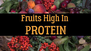 top 20 fruits high in protein youtube