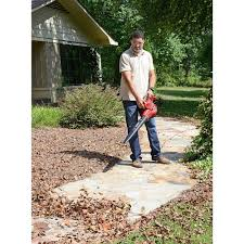 amazon com craftsman variable speed blower vac lawn and garden