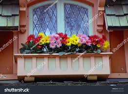 pictures flowers on the balcony best image libraries