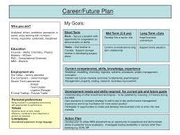 employee personal development plan template hitecauto us