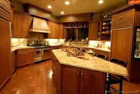 kitchen design ideas org traditional medium wood golden kitchen cabinets 12 kitchen