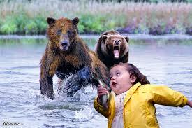 Running Bear Meme - funny animal bear pictures 16