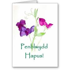 101 best welsh birthday cards images on pinterest birthday cards