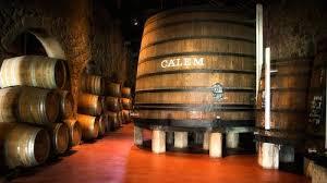 Wine Cellars Porto - douro river cruise port wine tasting u0026 live fado show porto