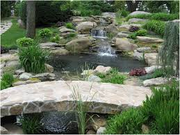 backyards bright backyard waterfalls water garden koi pond and