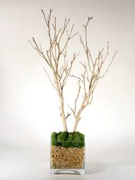 manzanita centerpieces musings of a mrs manzanita branches