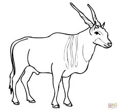 savannah and plains antelope eland coloring page free printable