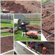 filling our raised bed gardens with horse manure a hen u0027s nest