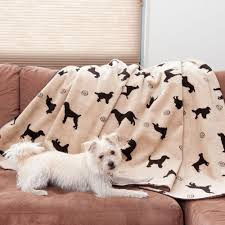 Dog Blankets For Sofa by Blankets Vanilla Dog