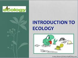 introduction to powerpoint amy brown science teaching ecology post 2 introduction to ecology