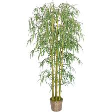 72 bamboo tree with pot minxny