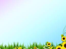 free flower kaffir lily backgrounds for powerpoint u2013 flower ppt