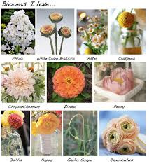 list of flowers for weddings kantora info