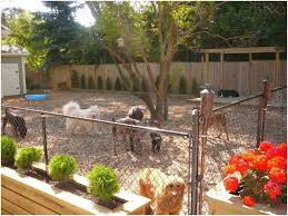 Backyard Ideas Without Grass Kid Friendly Backyard Without Grass 8th Wood