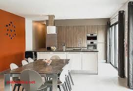 amenager cuisine salon 30m2 amenagement salon 30m2 pour idees de deco de cuisine nouveau idées