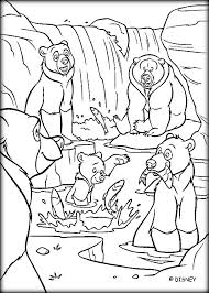 cute brother bear coloring pages kids color zini