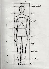 Anatomy Of Human Body Sketches Drawing The Human Head And Figure In Proportion 3 Steps
