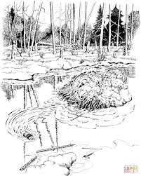 beavers coloring pages free coloring pages