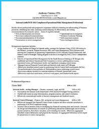 Auditor Sample Resume by Sox Auditor Sample Resume Risk Management Form Template